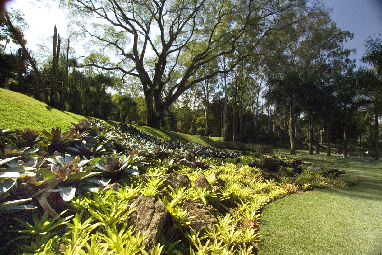 Clube do Explorador Mirim Outubro nos jardins de Inhotim