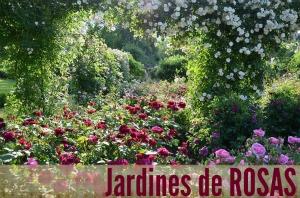 Plantas jardines y vida verde el blog de la tabla for Cafe du jardin covent garden