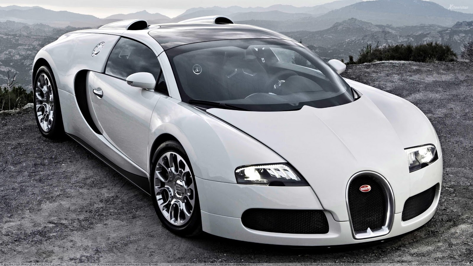 Sports Cars Bugatti Veyron White