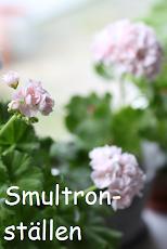 Härliga Smultronställen i Sverige
