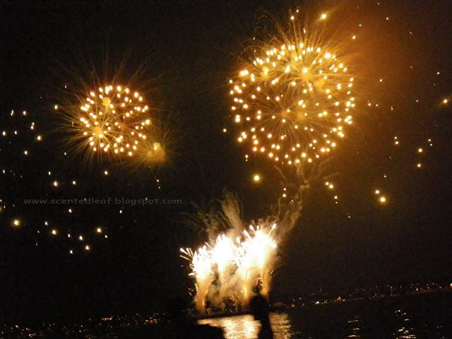 Fireworks - picture taken at Vancouver's Celebration of Light 2010