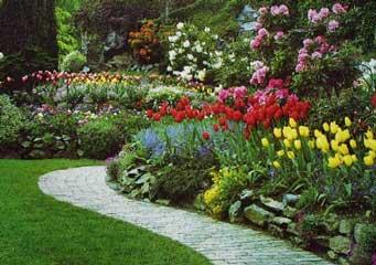 Verde jard n for Jardin que planter en janvier