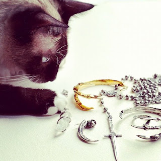 Siamese cat looking at necklaces and earrings