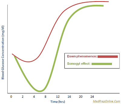 Dawn Phenomenon and Somogyi Effect