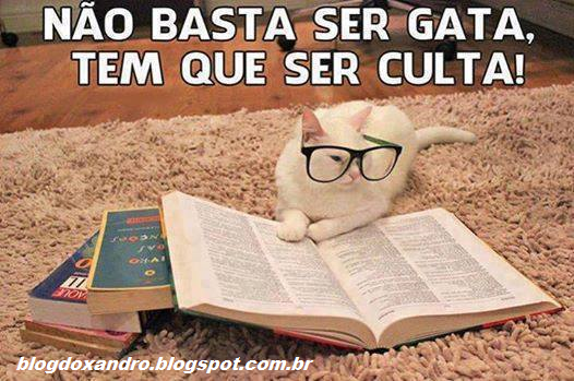 culta.png (526×349)
