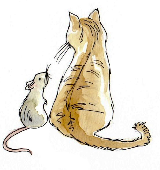 stories from the borders of sleep the cat and the mouse