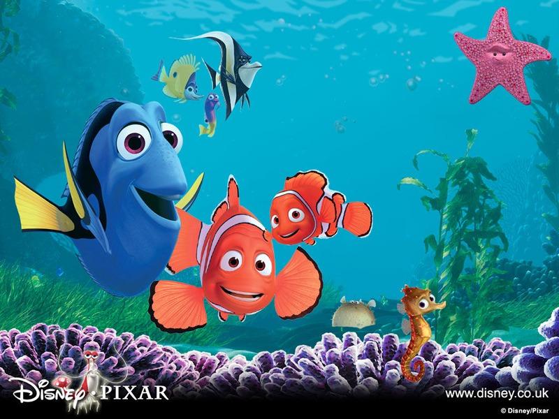Fish pictures nemo fish for Nemo fish pictures