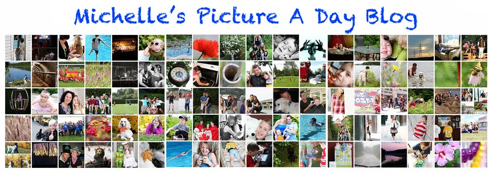 Michelle's picture a day blog