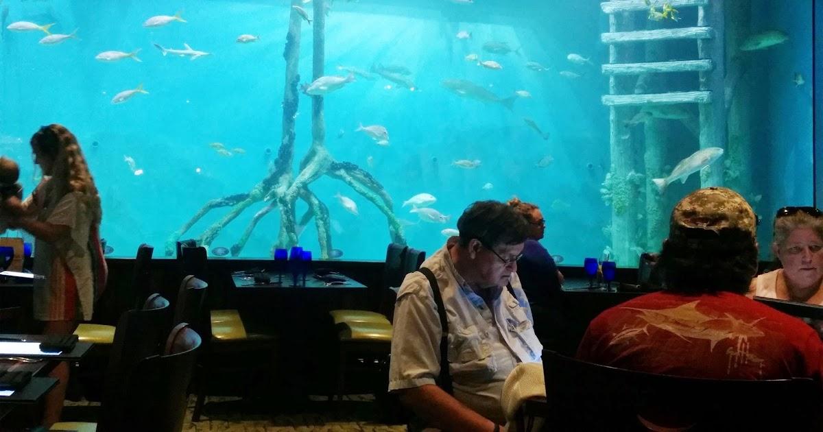 Epicurean Perils Of Sweet Polly Guy Harvey RumFish Grill