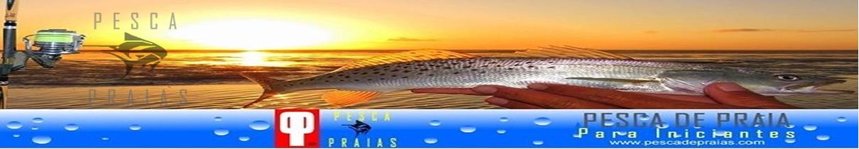 Pesca de Praia Para Iniciantes