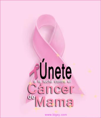Campaña mundial contra el Cáncer de Mama (distintivos)