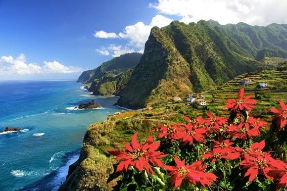 Madeira belleza natural