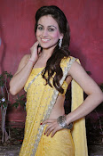 Aksha pardasany latest hot pics-thumbnail-12