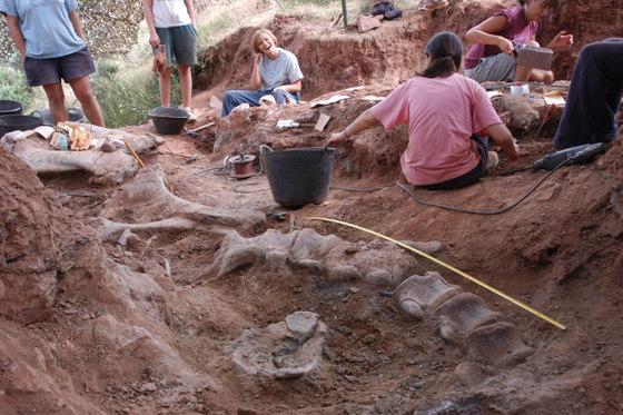 Excavaciones_dinosaurios_Salas_Burgos_Efimerata