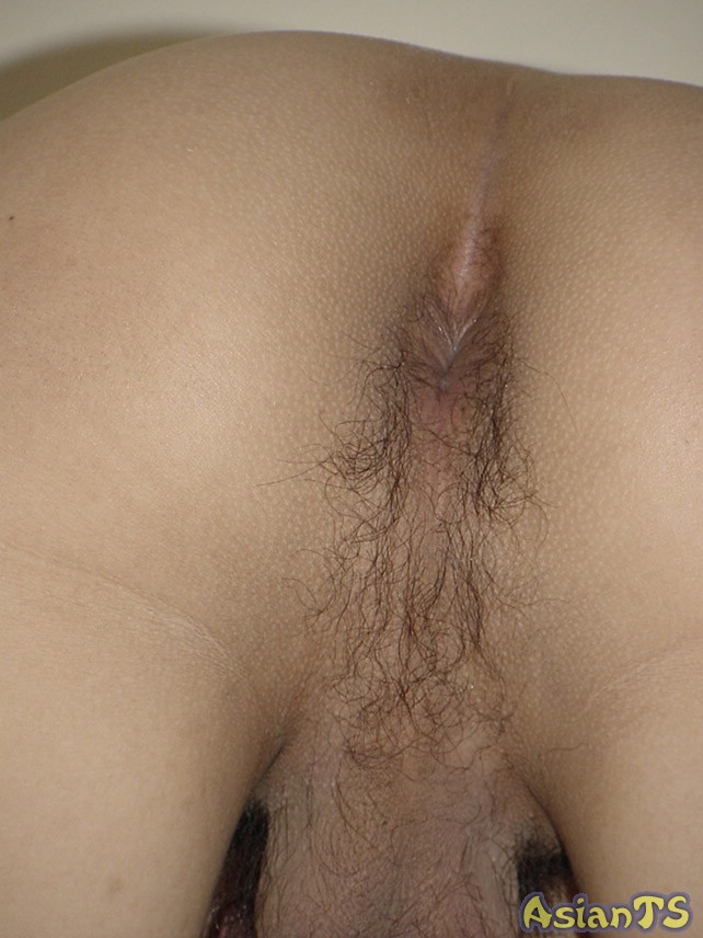 indian hijra sex orgen image