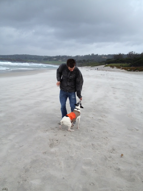 Eli Kallison + Hunter at Carmel Beach