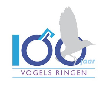 100 jaar vogels ringen 1911-2011 !