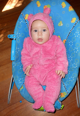 Teddy Bear Suits, baby blogs