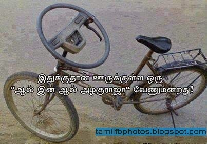 Bicycle with Steering - Funny Photo