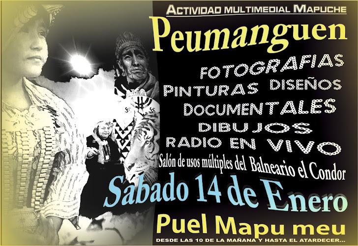 Actividad en Puel Mapu