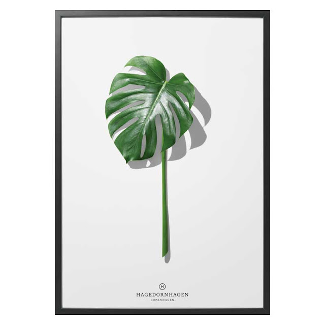 Folium F5 art print via Nordic Blends