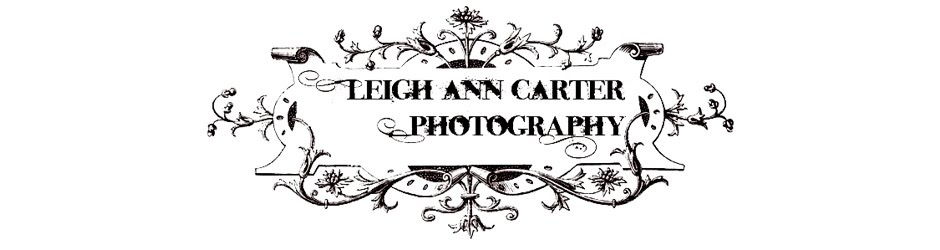Leigh Ann Carter Photography- Dickinson/League City