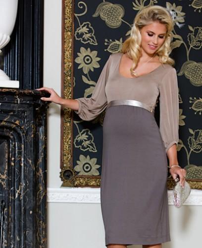 Christmas Dress Maternity