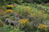 The Garden at Montpelier Cottage