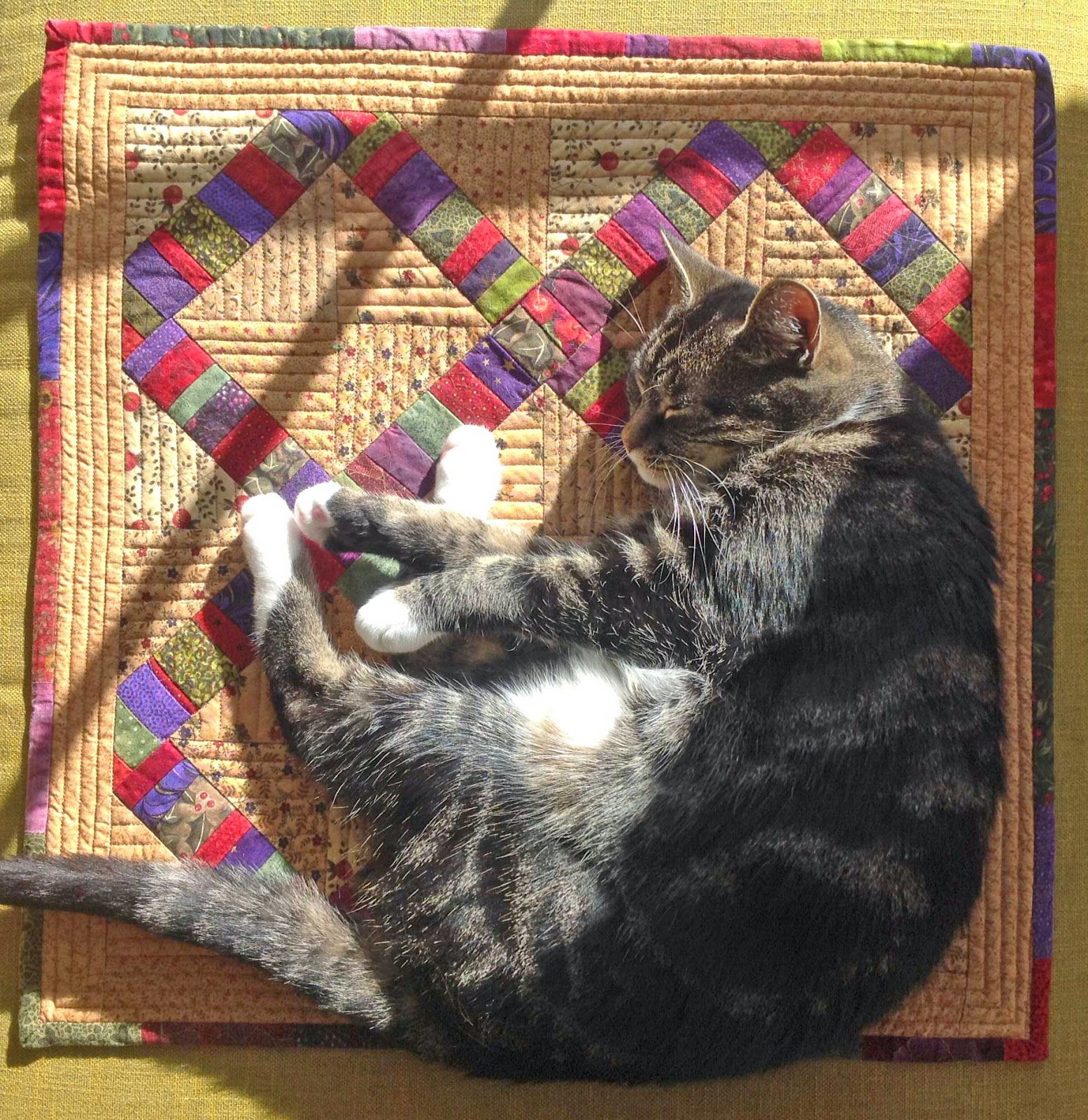 Suzi the Cat on her Cat Mat quilt