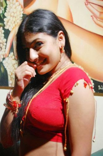 bgrade actress cleavage red blouse photos