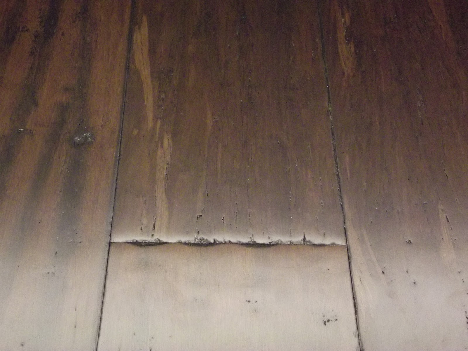 Strand Woven Bamboo Flooring Denver Co
