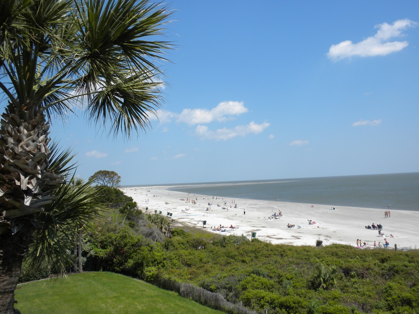 Saint Simons Island