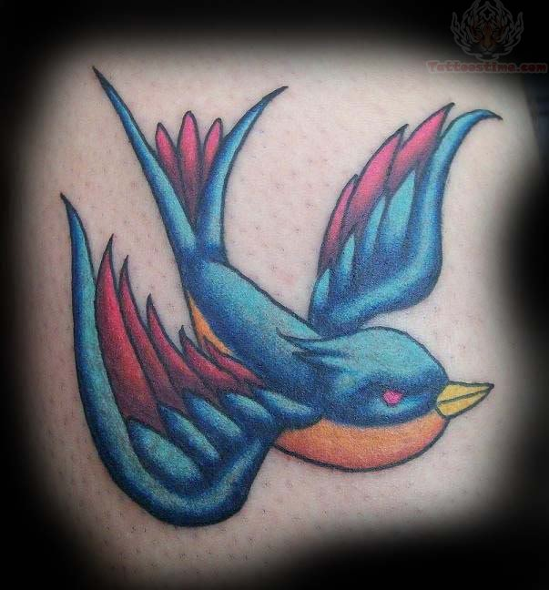 Only Swallow Tattoo Bird Pictures