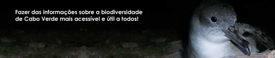 Aves de Cabo Verde