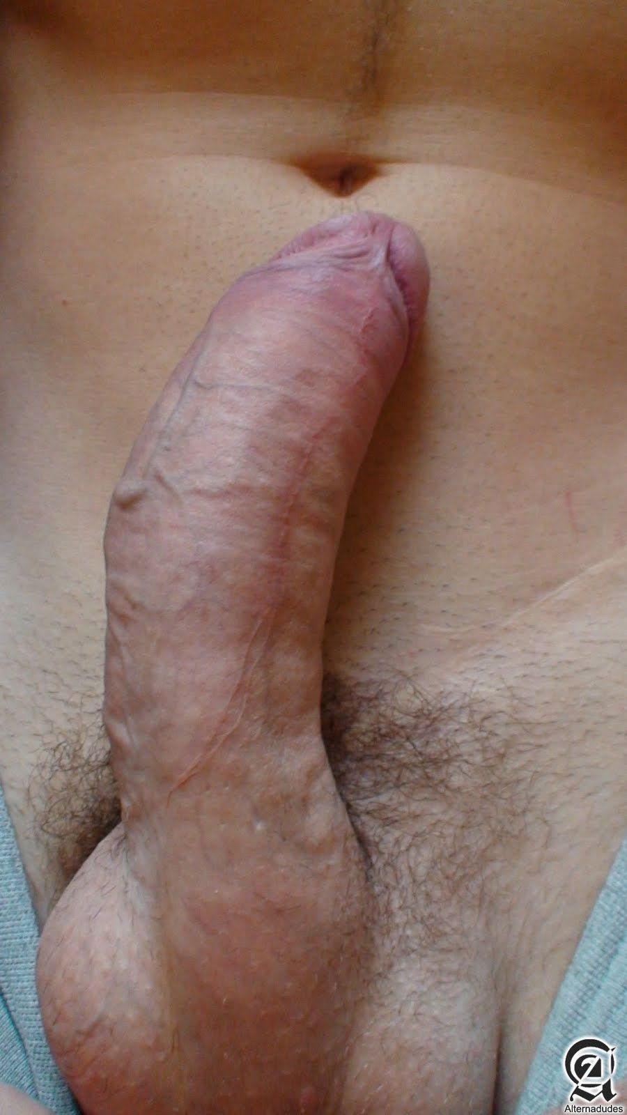 Close up cock uncut.