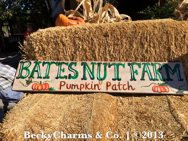 Pumpkin Hunting at Bates Nut Farm Pumpkin Patch 2013 | Valley Center, San Diego, CA by BeckyCharms