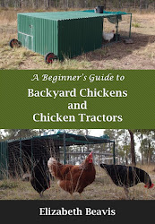 Chicken tractor ebook coming soon!