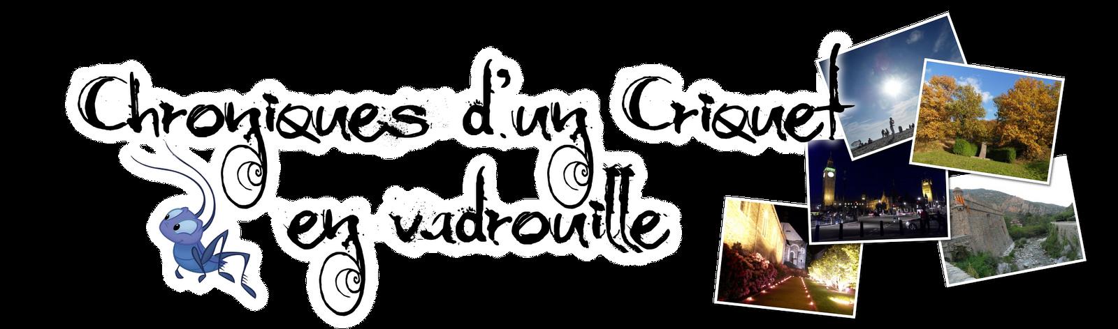 Chroniques d'un Criquet en vadrouille