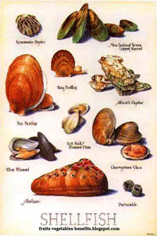 Fruits vegetables benefits benefits of eating shellfish for Names of fish to eat