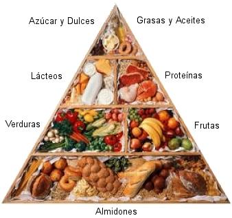 Es necesario cuanto la grasa al adelgazamiento