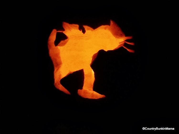 Child's Bat Cat carved pumpkin