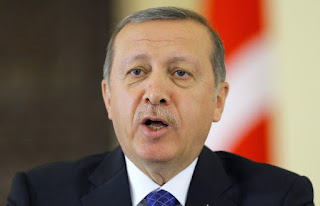 Эрдоган привел гитлеровскую Германию как пример страны с президентской системой власти