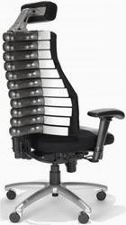 Back Pain - RFM Verte Ergonomic Office Chair