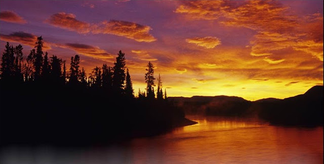 Dawn on the Dezadeash River and Boreal Forest, Yukon, Canada