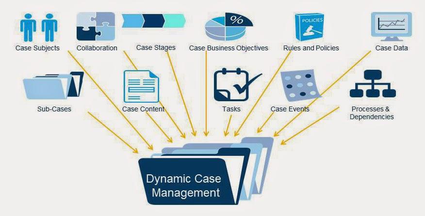 dynamic case management for dummies pdf