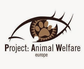 Please sign: DEMAND LEGAL RIGHTS FOR ANIMALS IN EUROPE!