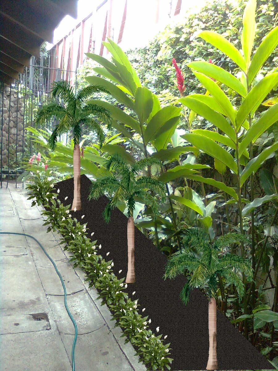 Mantenimiento y dise o de jardines jardin seco for Diseno de jardines con troncos