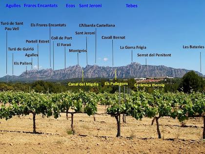 Panoràmica de la muntanya de Montserrat des de les vinyes dels Plans dels Hostalets