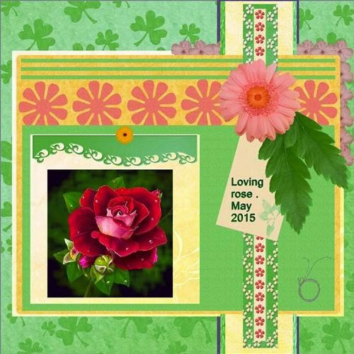 page 7 - May 2015 - Loving rose .