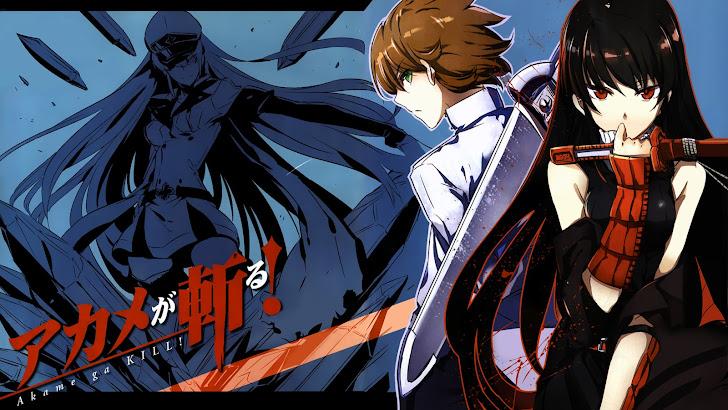 Akame ga Kill Anime 2014